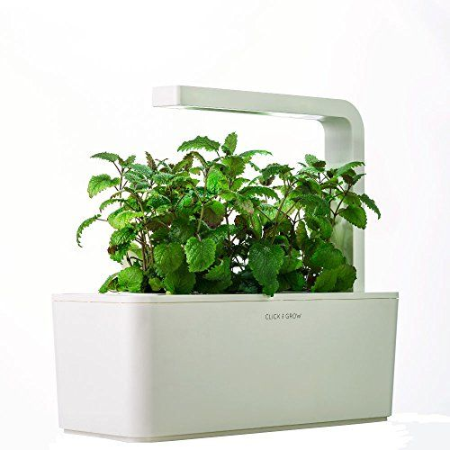 Click Grow Indoor Smart Fresh Herb Garden Kit With 3 Basil Cartridges White Lid Self Watering Pl Herb Garden Kit Indoor Herb Garden Herbs Indoors