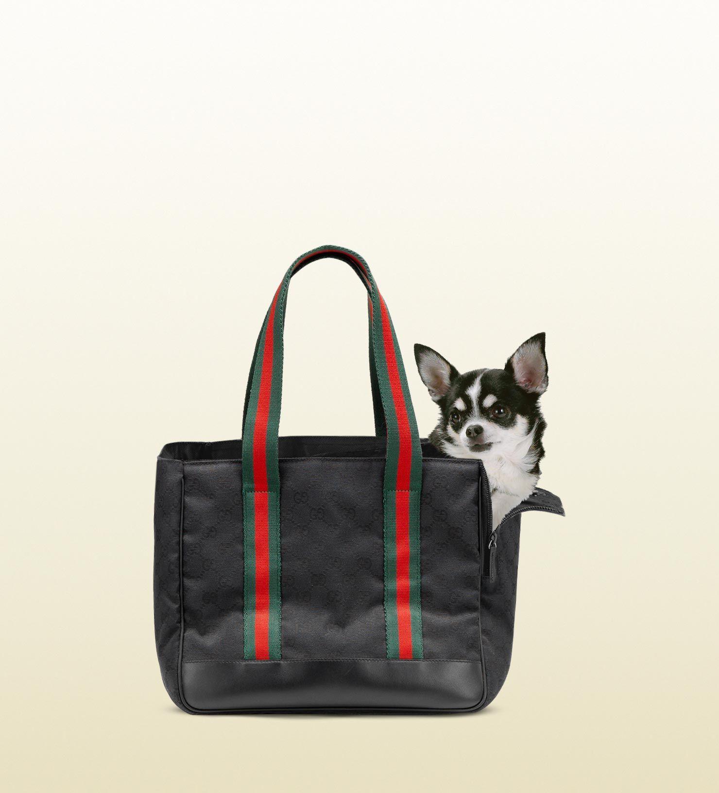 Gucci dog bag. | WOOF WOOF WISH List | Pinterest