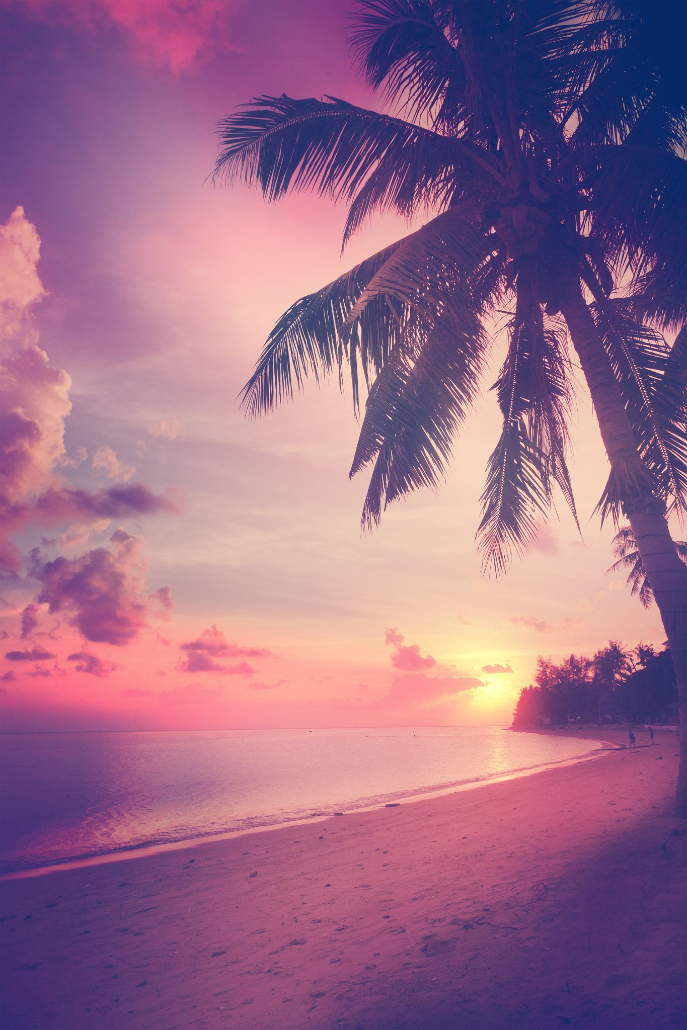 Beautiful tropical beach with silhouettes of palm trees at sunse