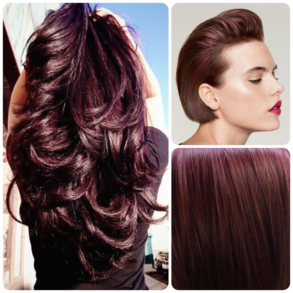 Violet brown v uglyduckling hair color intense violet