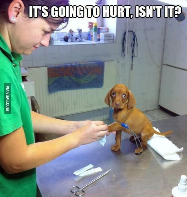 No, it wont hurt...