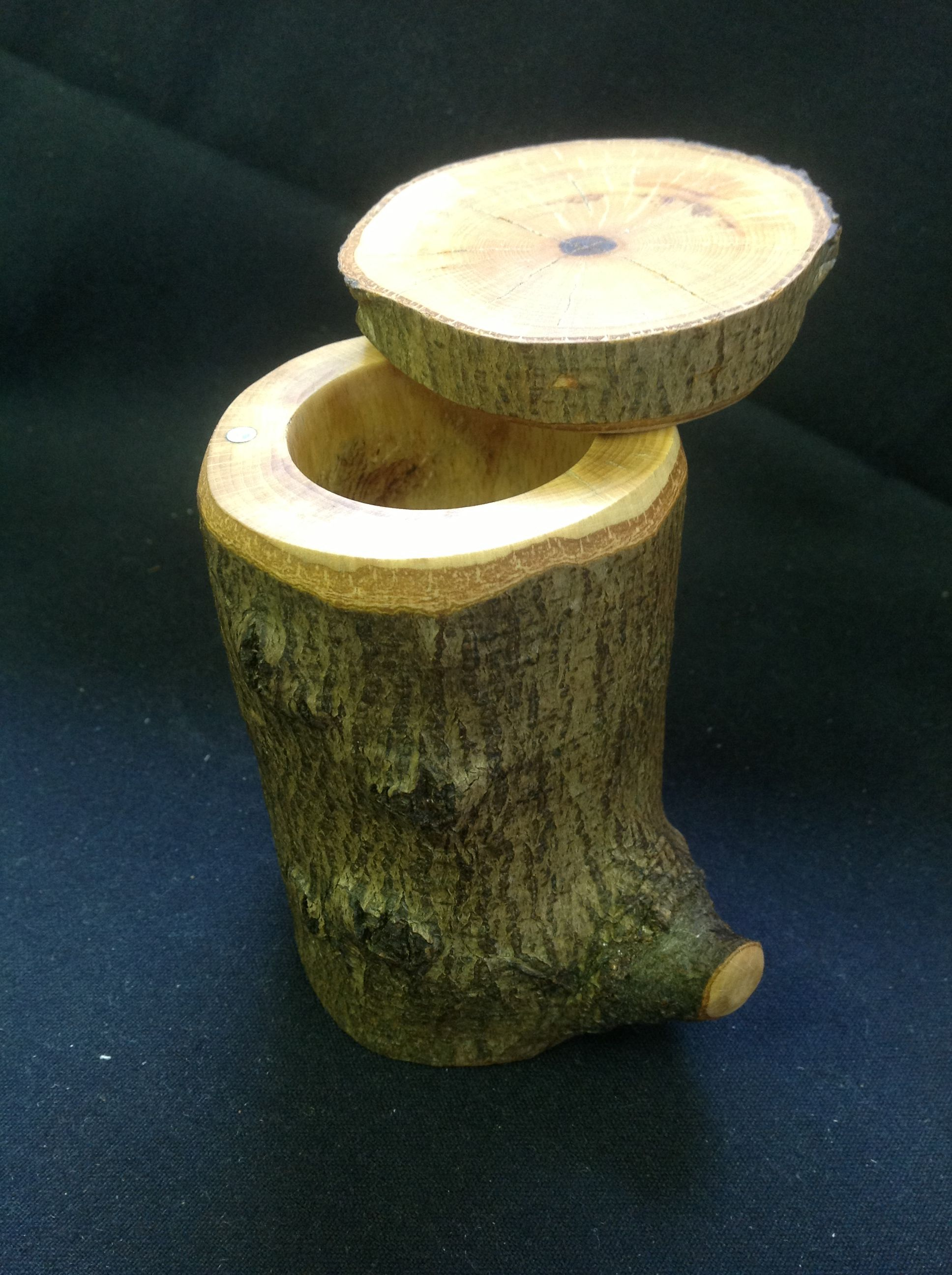 Sugar Maple Tree Stump Jewelry Box. The Lid Attaches And Swivels On  Embedded Magnets.