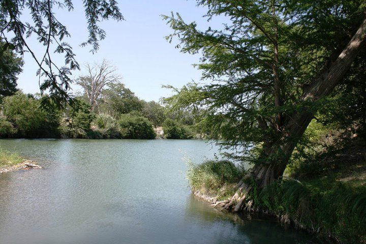 A picture of the Guadalupe River here at the Ranch.  There's nothing better than sitting under a cypress tree and taking in nature.