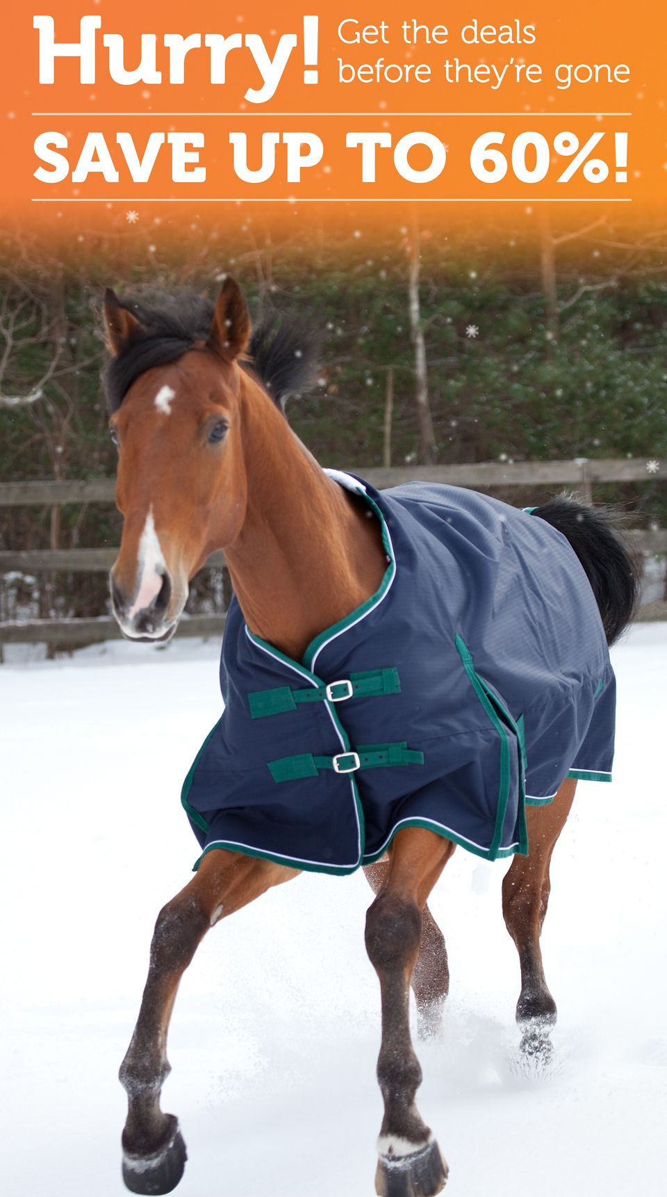 Sale From Smartpak Equine Smartpak Equine Smartpak Holiday Clearance
