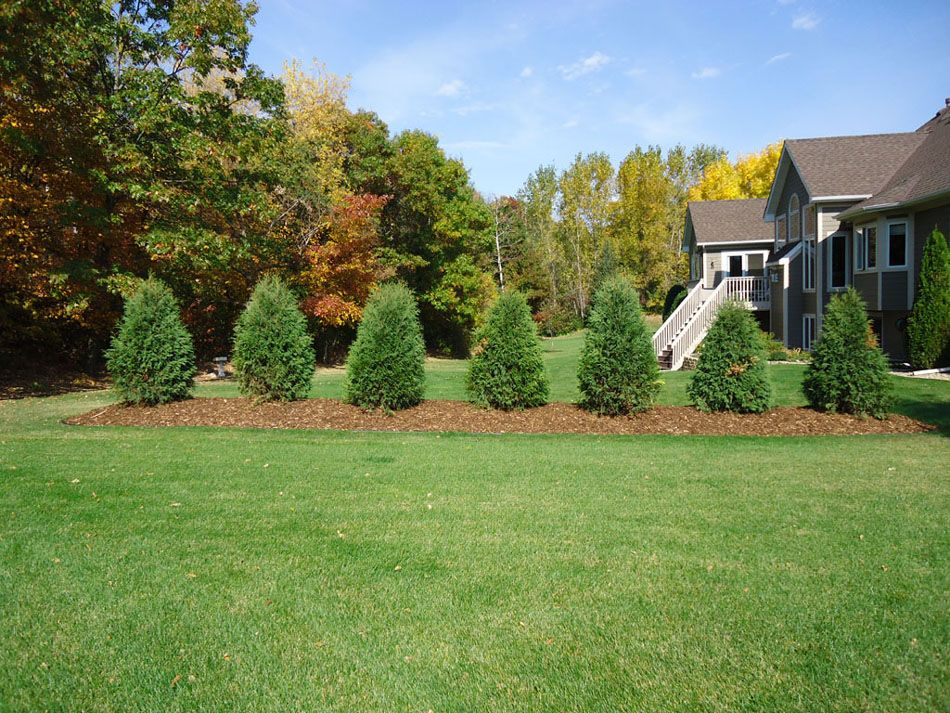 landscaping - professionally installed