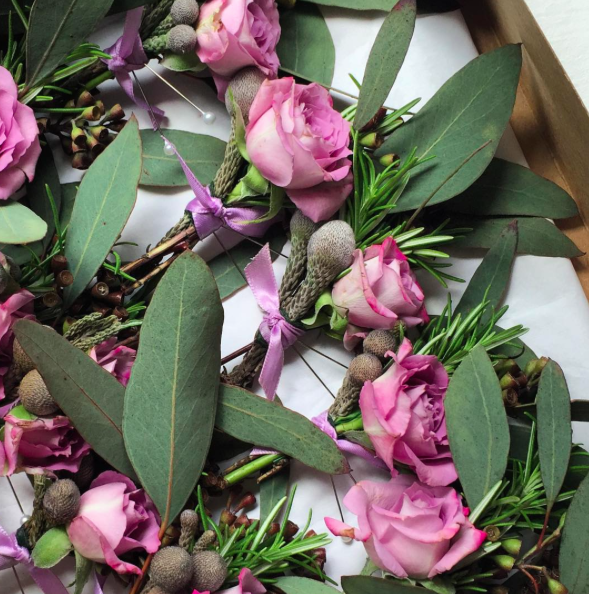 June boutonnieres with roses, brunia and rosemary.