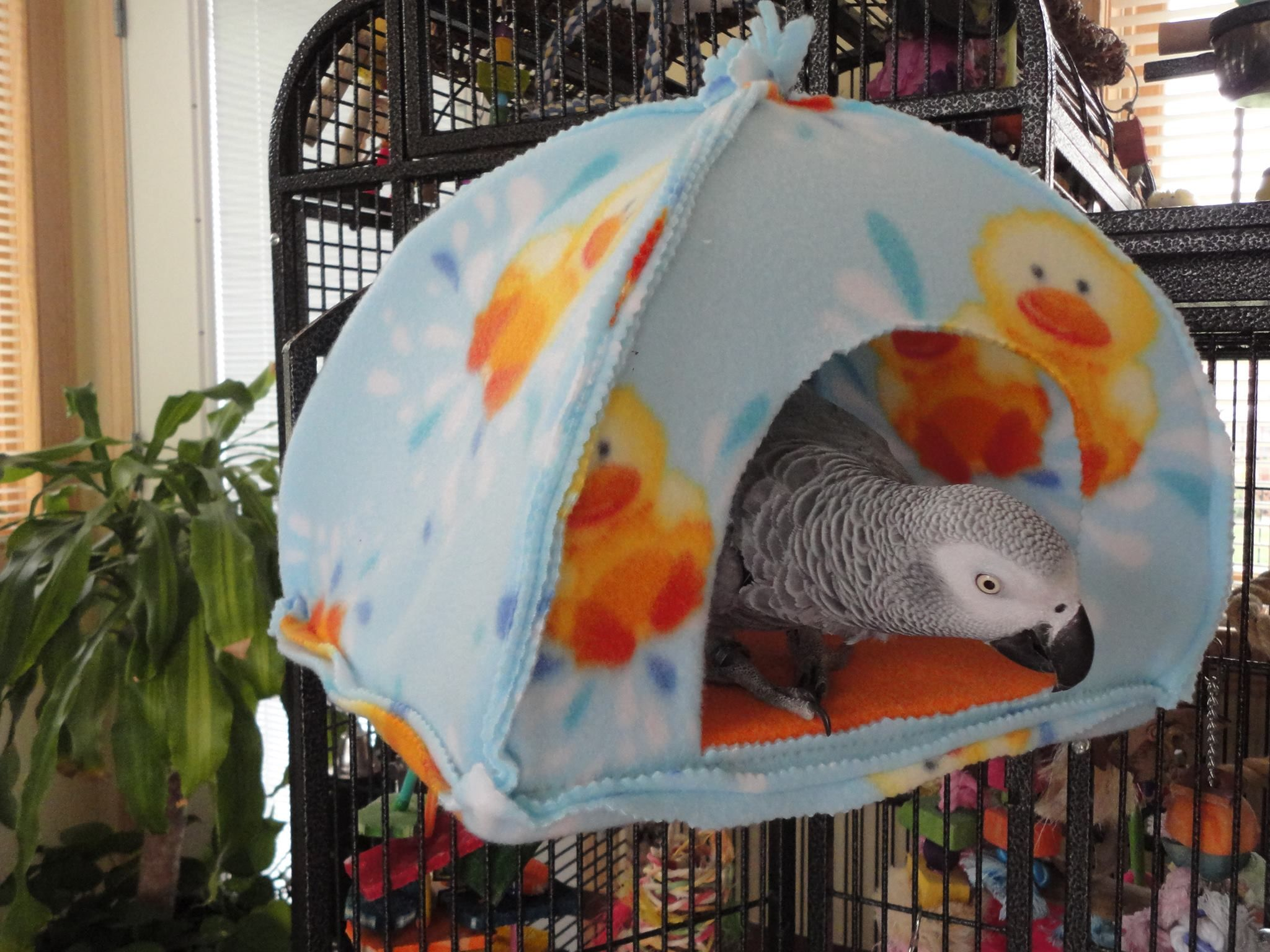 DIY Projects for Pets: Parrot Sleeping Tent