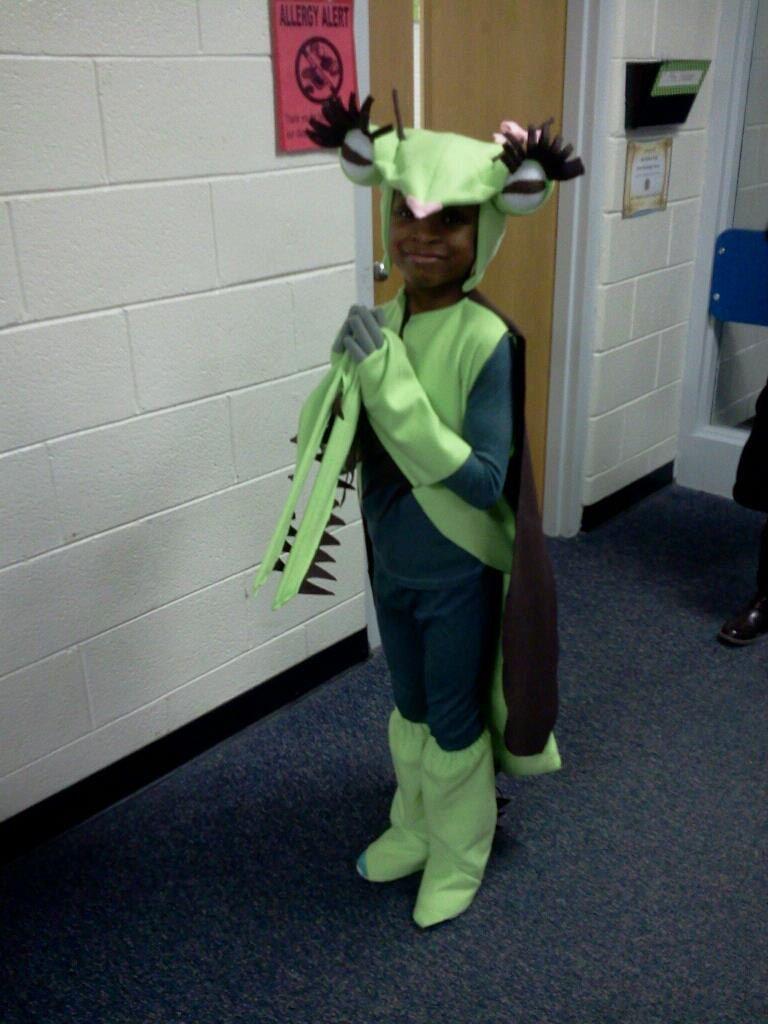Mosquito costume. Especially great Helmet/Antennae/Proboscis ...
