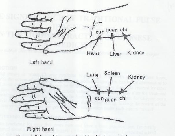 pulse diagnosis