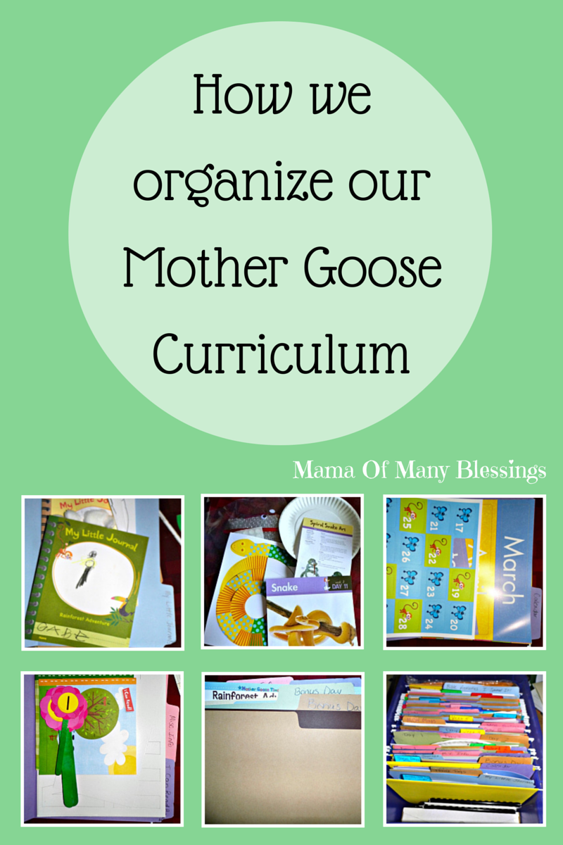 How We Organize Our Preschool Curriculum