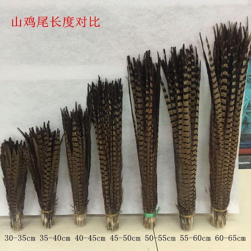 Wholesale 10-500pcs Natural Pheasant Feathers 25-100 cm//10-40 inches Decoration