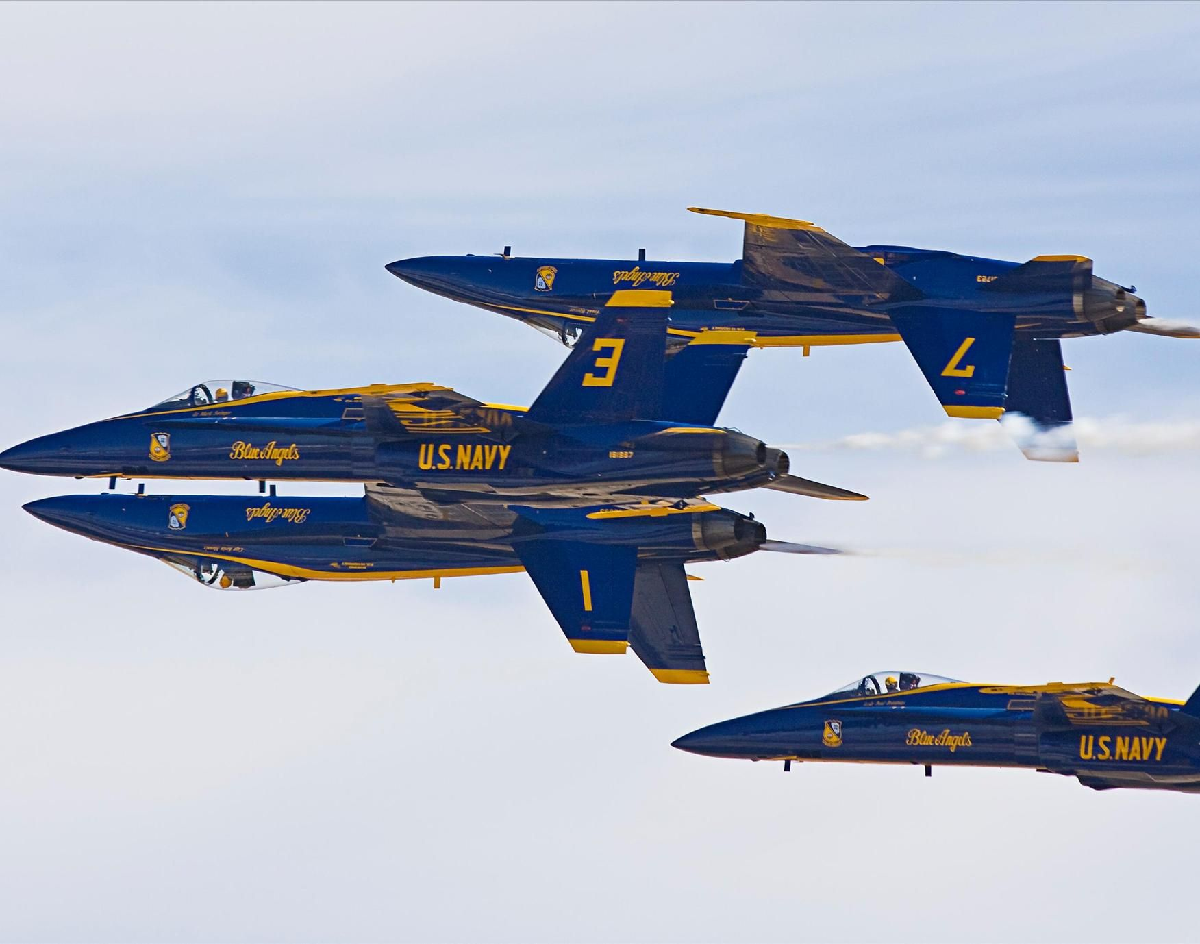 Pin By Stephanie Ayres On Birds Blue Angels Us Navy Blue Angels Air Fighter
