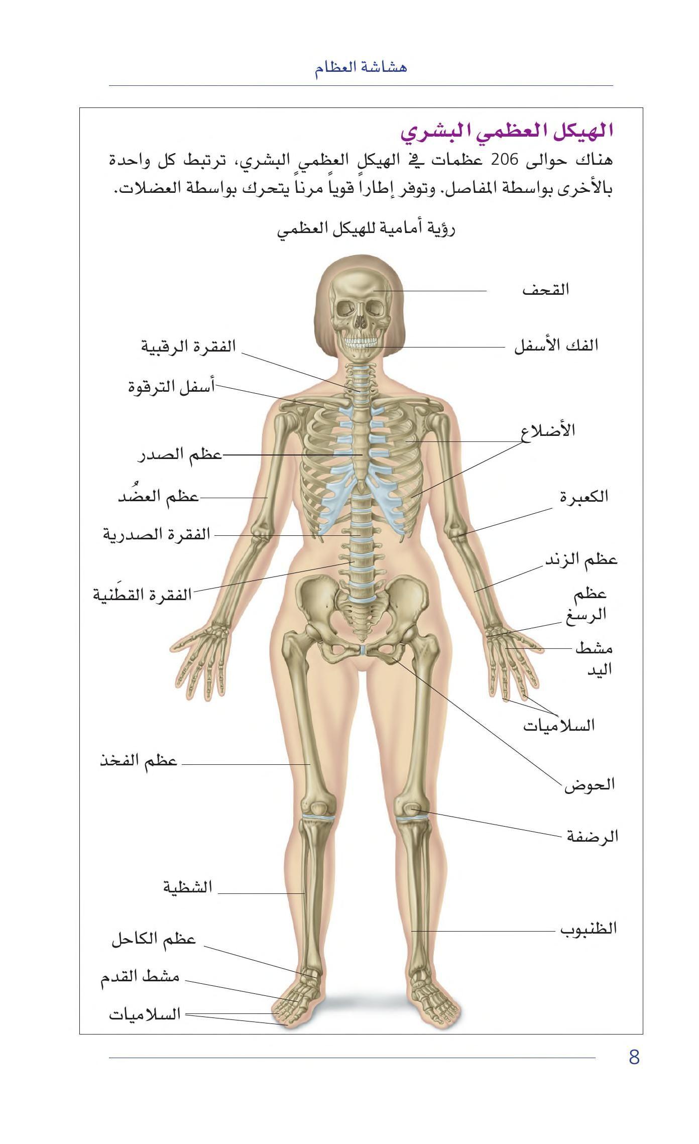 Https Archive Org Stream 20200321 20200321 1835 كتب طبيب العائلة هشاشة العظام Internet Archive