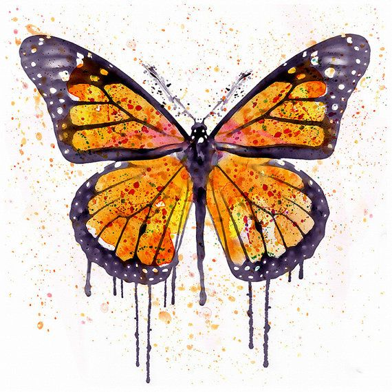 Watercolor Painting Of A Beautiful Monarch Butterfly Butterfly