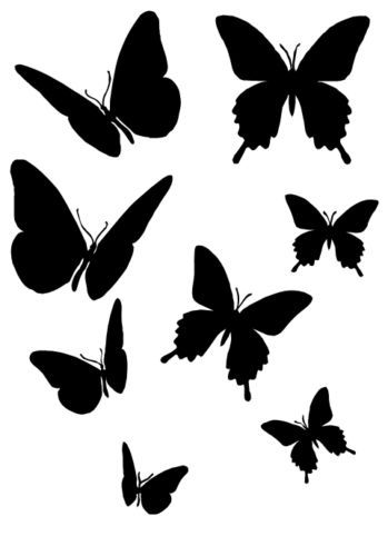 Butterfly Silhouettes  Painting    Silhouettes