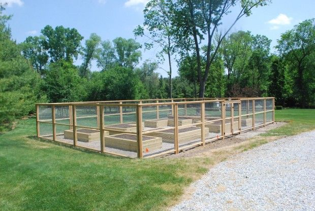 deer proof fence around a beautiful raised bed vegetable garden