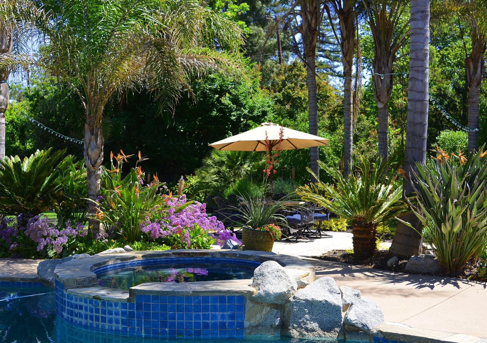 Beautiful Tropical Oasis Sacramento Ca Www Geremiapools Com Dream Backyard Pool Landscaping Dream Pools
