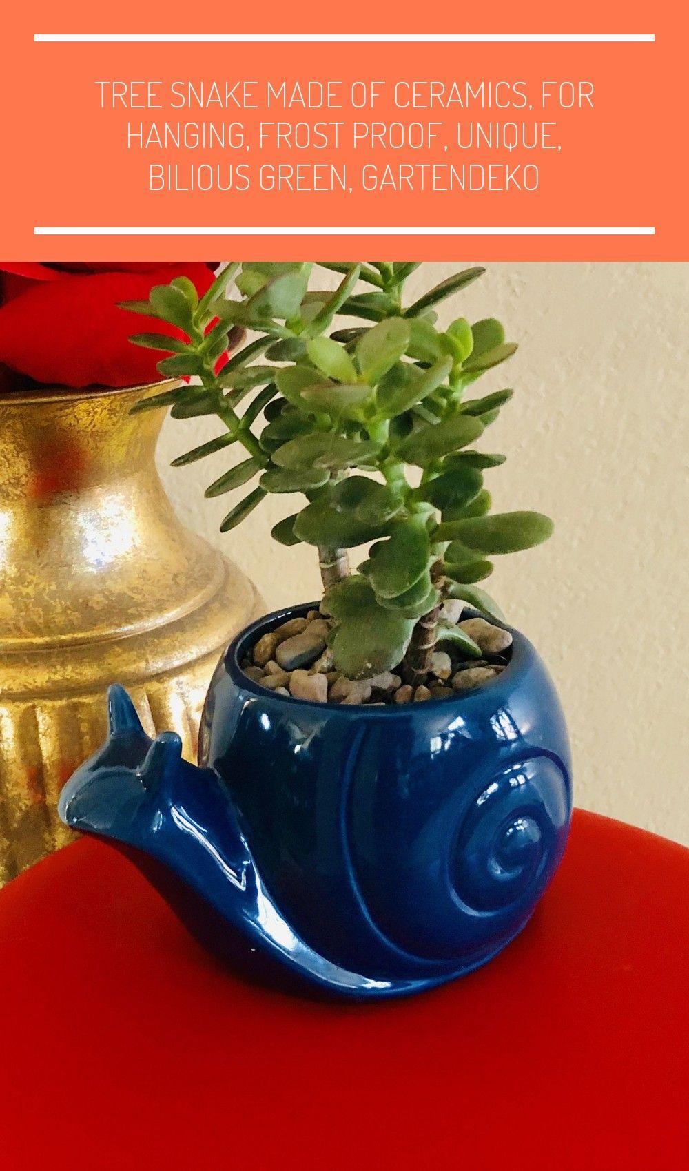 Blue Ceramic Snail Planter #JadePlants  #SucculentsGarden  #CrassulaOvata  #PlantingSucculents  #CactusGarden  #Plants  #Succulents  #PlantingFlowers  #CactusPlants  #SucculentsInContainers  #SucculentPots  #UnusualPlants  #Suculents  #Houseplants  #PottedPlants  #BonsaiTree  #Bonsai  #Cactus  #HousePlants  #DesertPlants  #CactiAndSucculents  #GardenPlants  #PlantLife #poterie jardin escargot Miniature Jade Plant