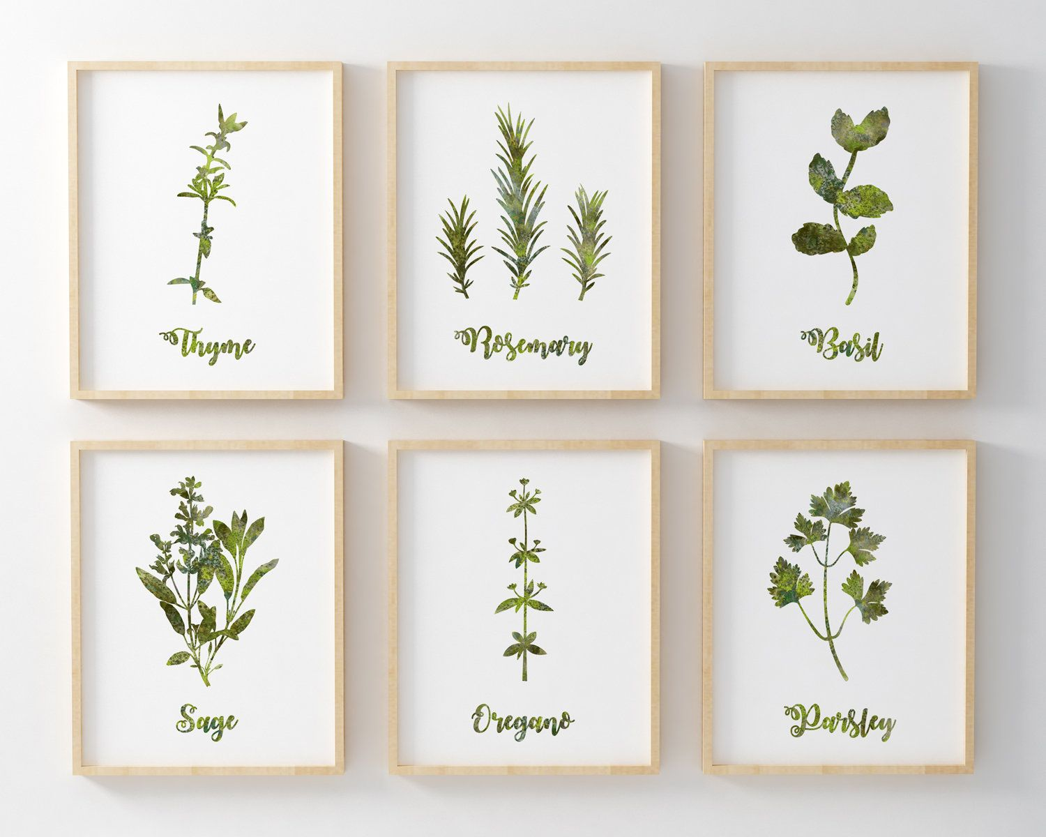 Herb Prints Set Of 6 Watercolour Herbs Paintings Printable