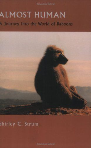 Almost Human A Journey Into The World Of Baboons Shirley C Strum 9780226777566 Amazon Com Books Baboon Used Books Online Used Books