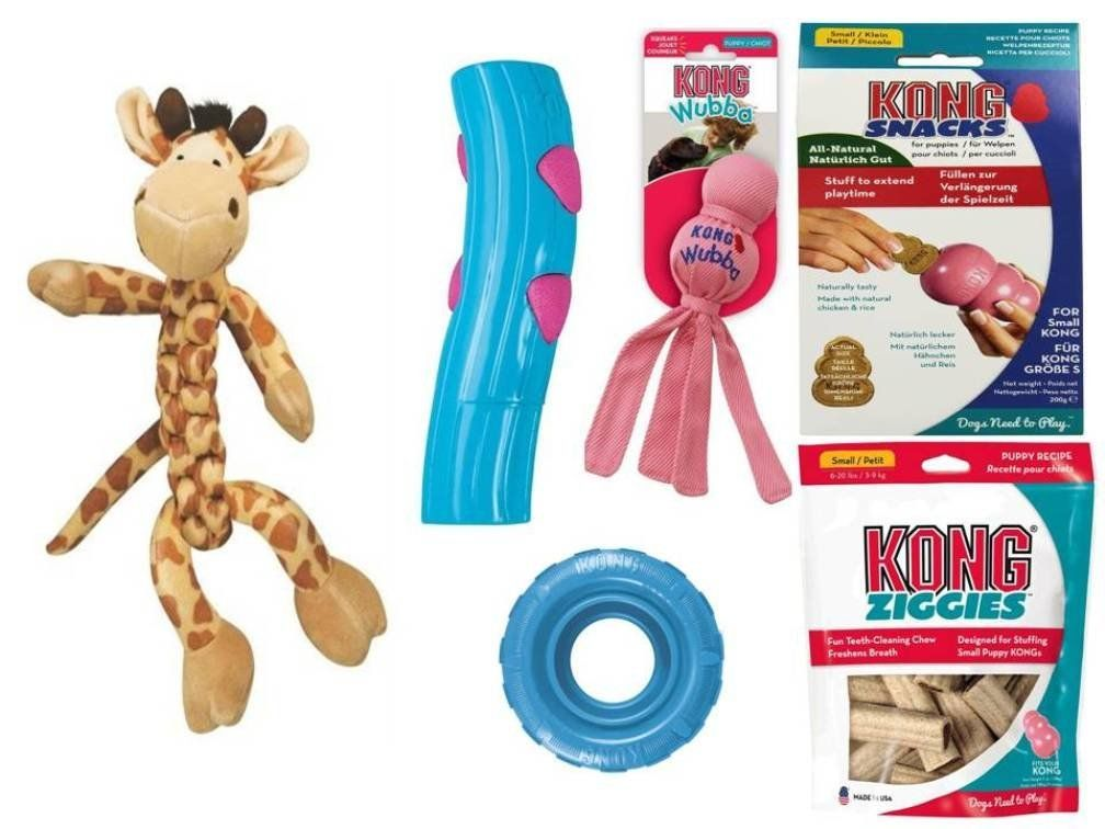 Kong Puppy Play Pack Small Toy Bundle Pink Blue Asst 1