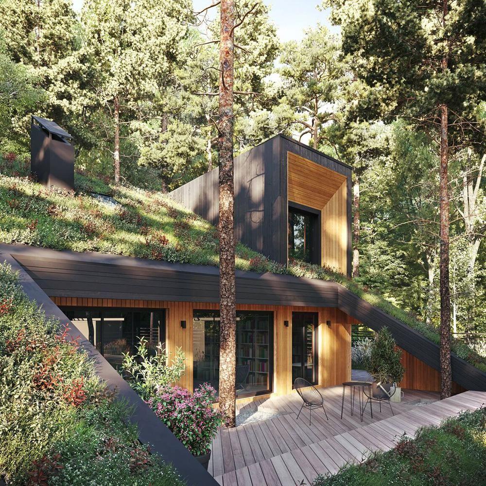 Unsichtbares Haus: Heimliches Domizil im Wald
