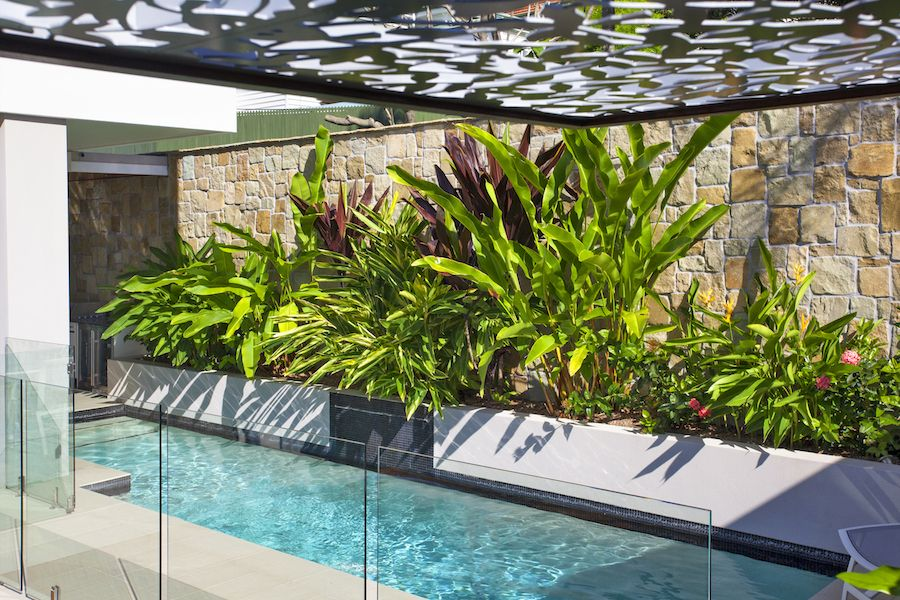 Small-garden-with-narrow-pool.-Design-Utopia-Landscape-Design ...