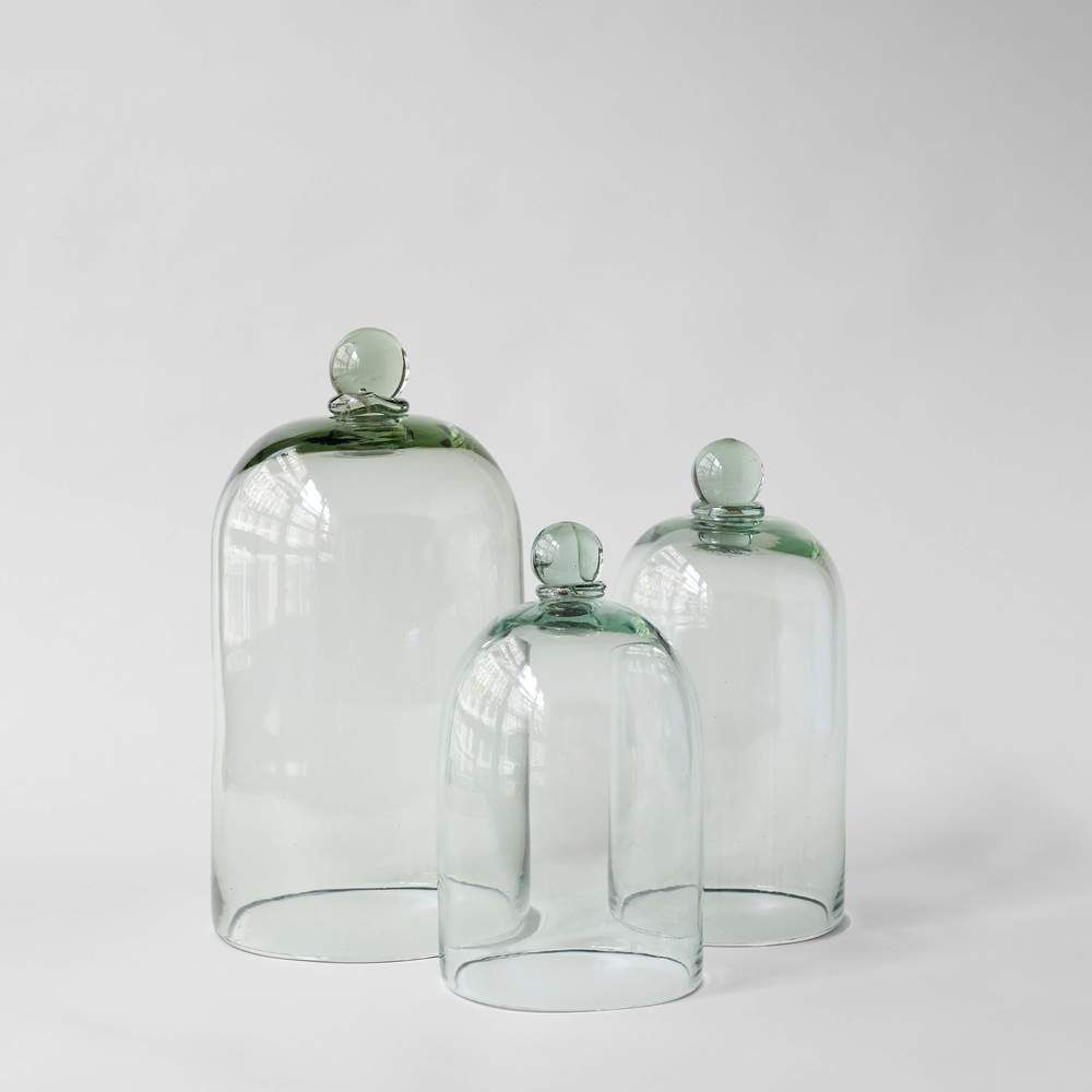 Glass Cloche Jars With Wood Base For Sale Bloomist Glass