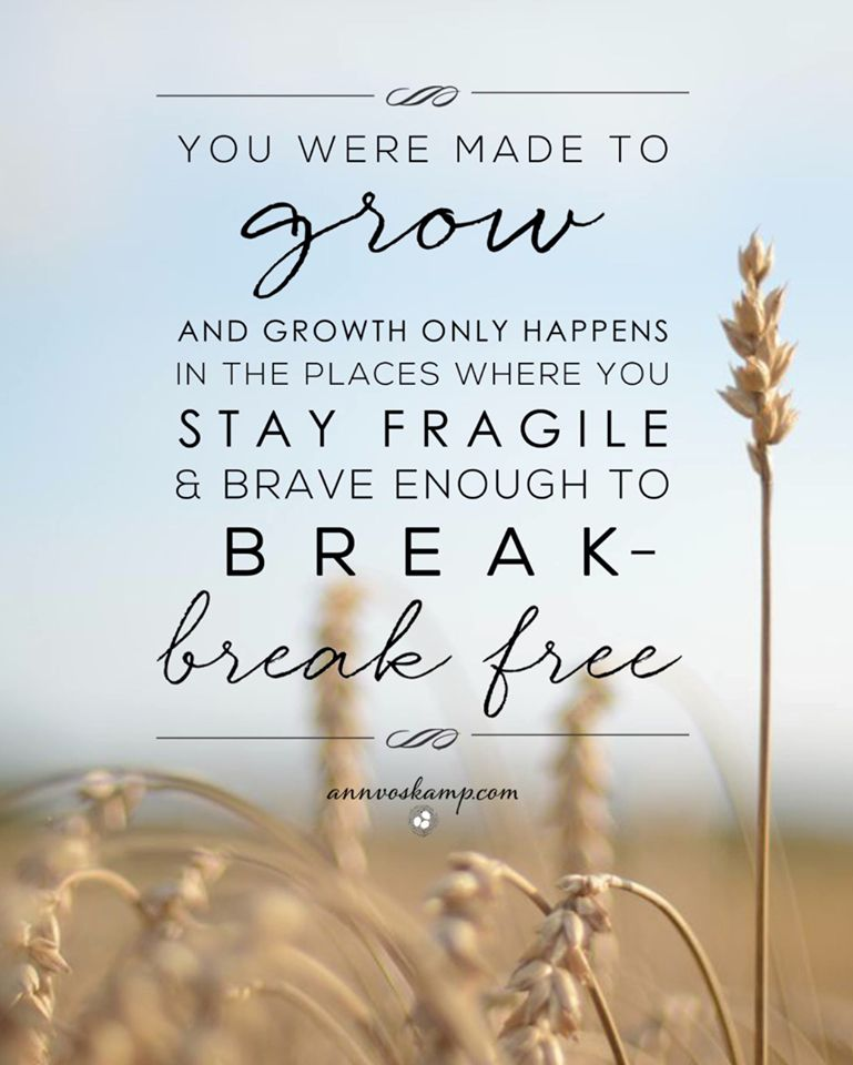Stay fragile.