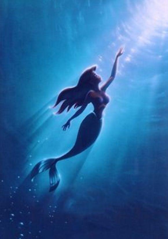 My Favorite Disney Princess Disney Films Filmes De Animacao