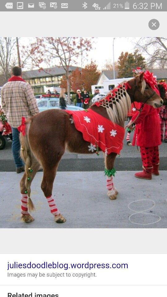 Horse Christmas costume - Horse Christmas Costume TR 4 Heart & Soul Horse Costumes