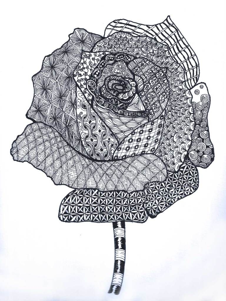 Rose Zentangle Coloring Pinterest Zentangle Art And Cool Drawings