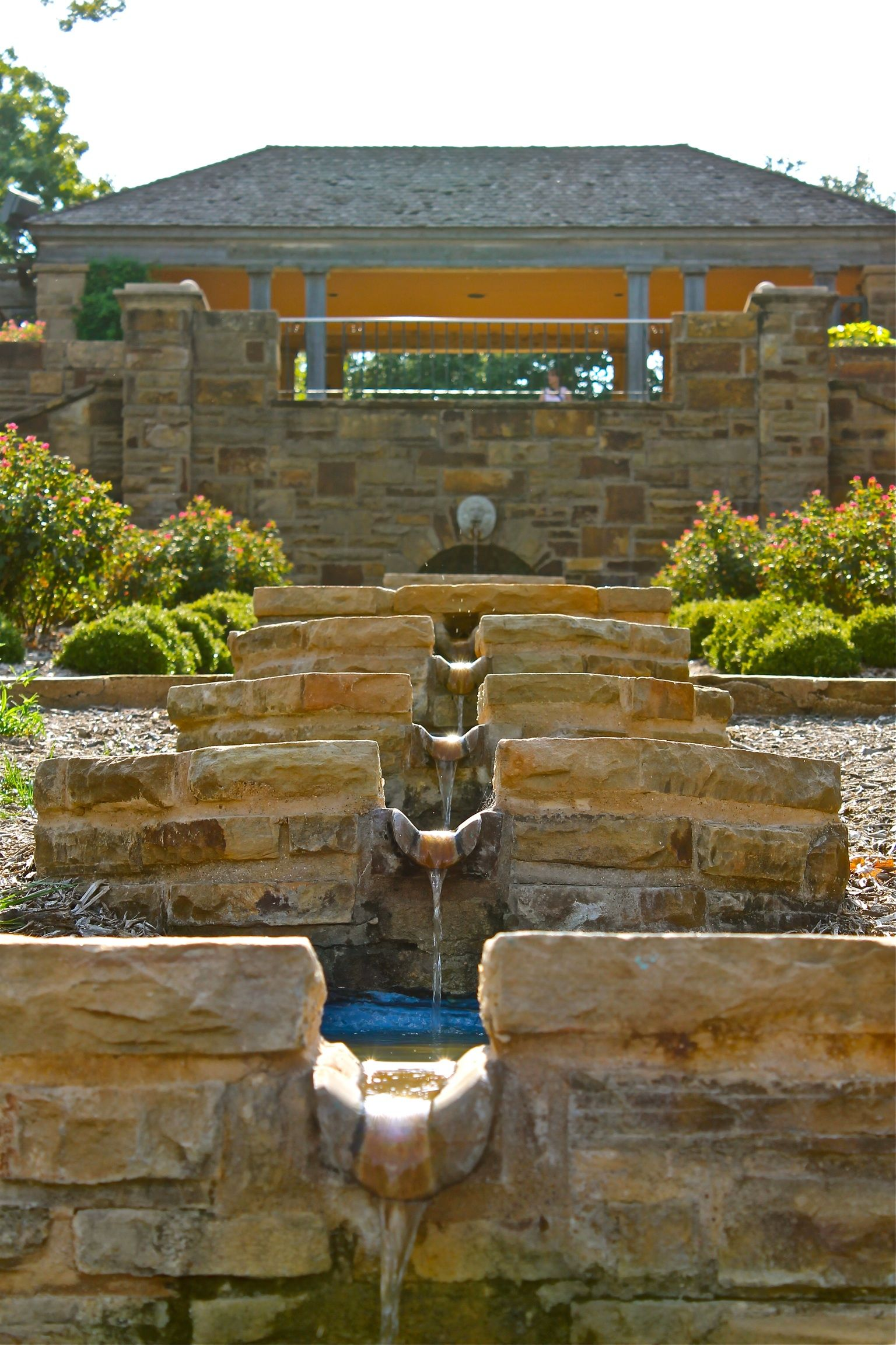 Fort Worth Botanical Gardens | my work | Pinterest | Fort worth ...