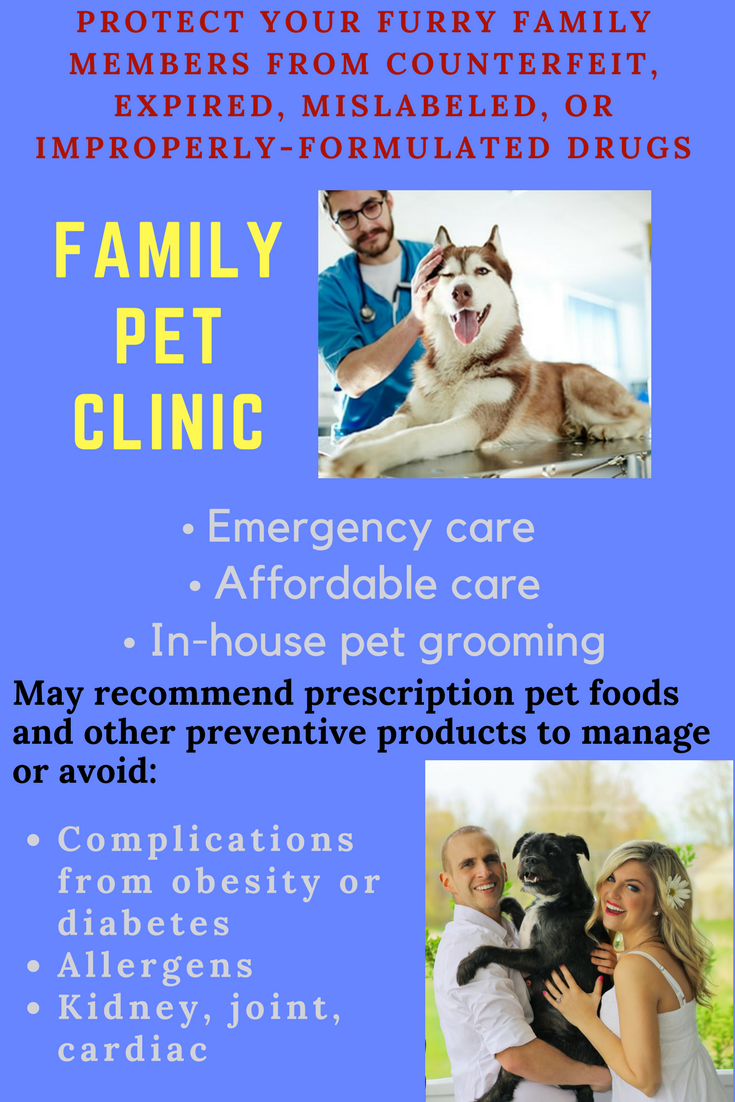 Oral conditions can damage your pet's quality of life and