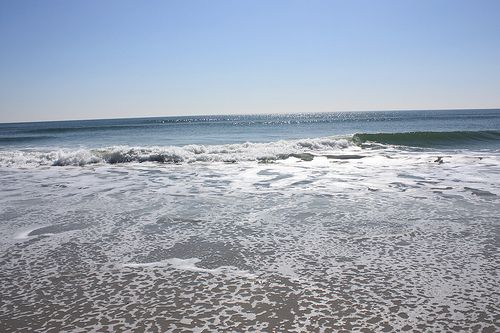 Bliss: Trips to the Jersey Shore