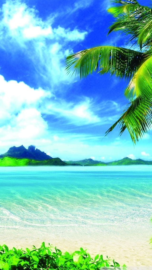 The iPhone 5 Wallpaper I just pinned! Wallpapers
