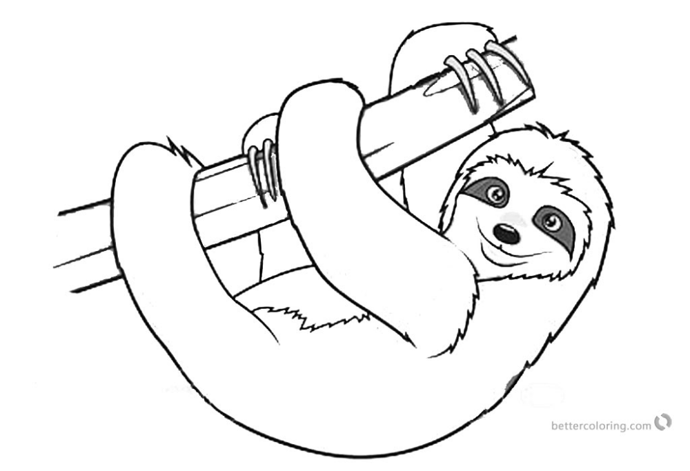 Sloth Coloring Pages Realistic Three Toed Sloth Free Printable Coloring Pag Disney Coloring Pages Printables Kids Printable Coloring Pages Printable Coloring