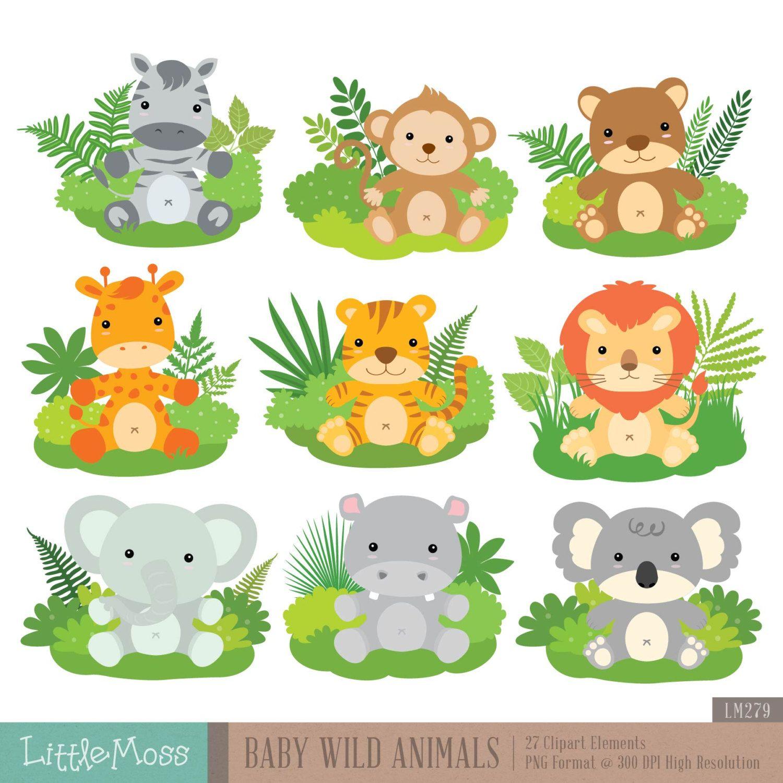 Baby Wilde Dieren Digitale Clipart Etsy Baby Wild Animals Safari Baby Animals Baby Jungle Animals