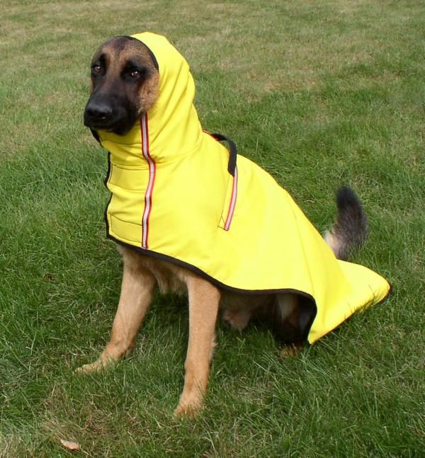 dog wearing fleece lined raincoat funny but axel would love this he hates getting wet the. Black Bedroom Furniture Sets. Home Design Ideas