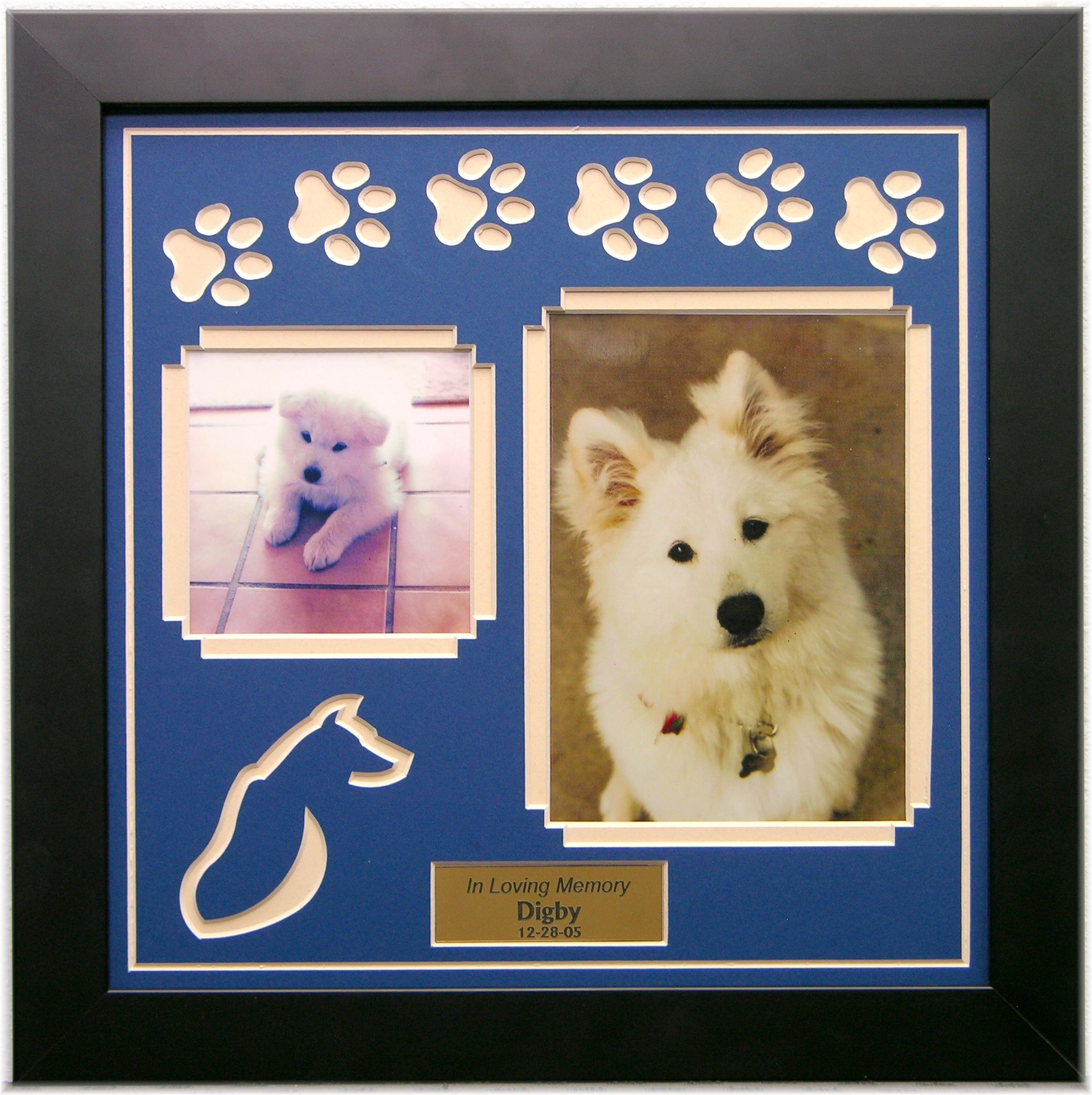 Pet Loss Memorial Products | Family dogs, Shadow box and Box