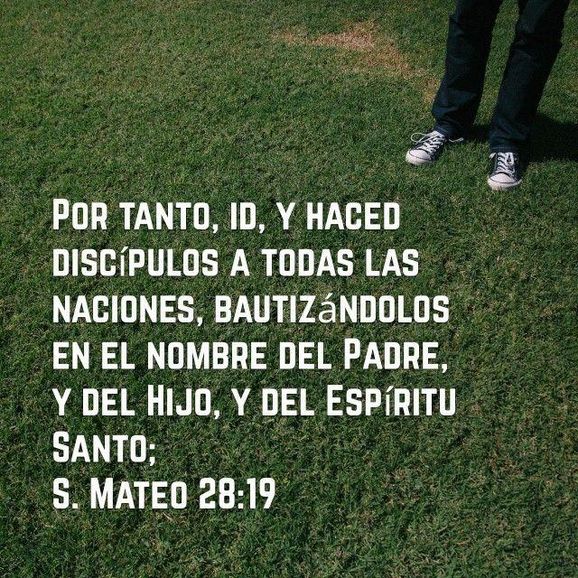 #Mateo #Biblia #Discipulos #Bautizo
