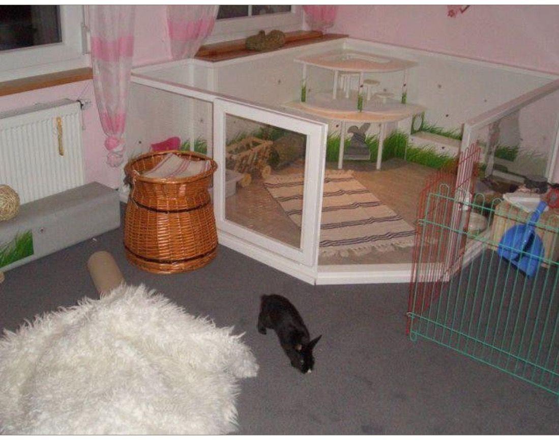 HOUSING YOUR PET RABBIT INDOOR RABBIT PLAYPENS Indoor