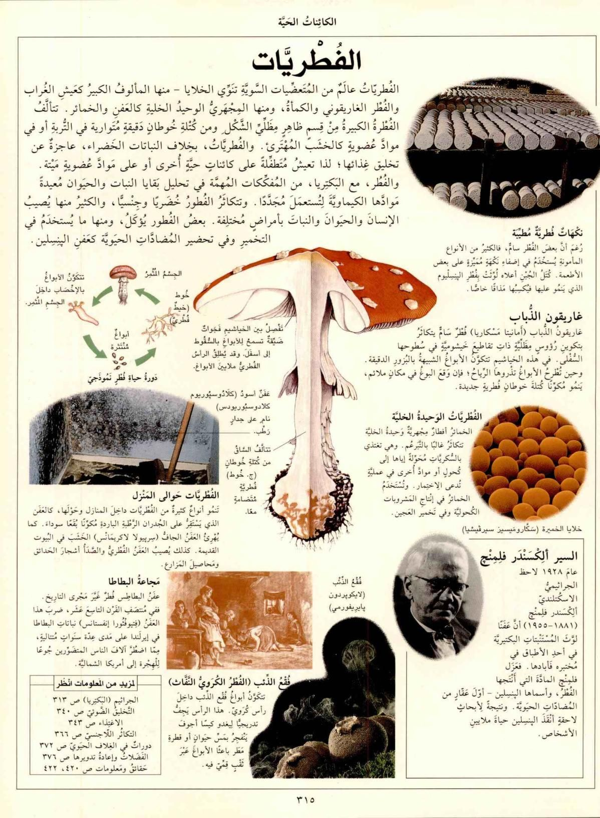 الموسوعة العلمية الشاملة مكتبة لبنان ناشرون Free Download Borrow And Streaming Internet Archive Medical Photos Arabic Books Ecology