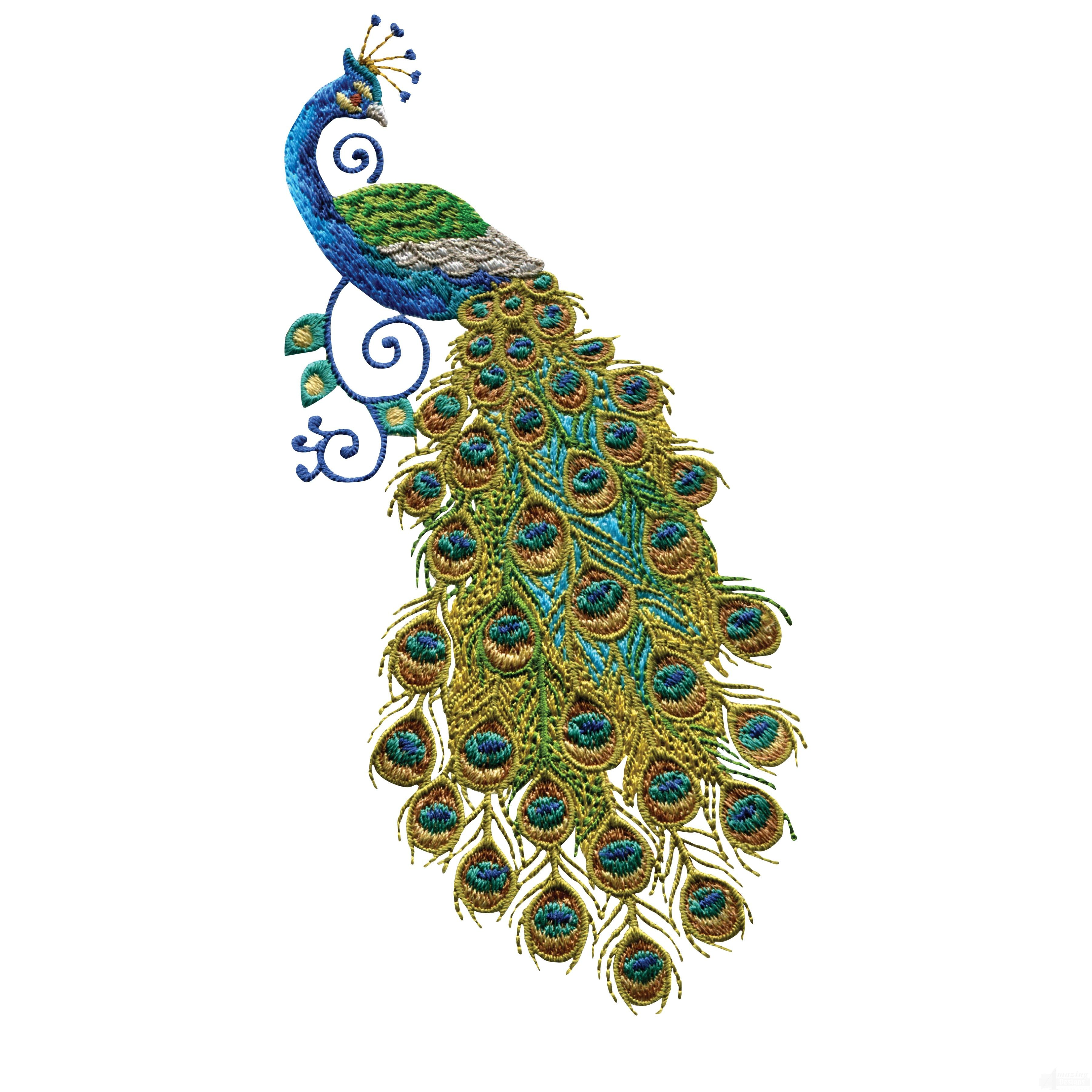 Swnpa128 Peacock Embroidery Design Needles Hooks Pinterest