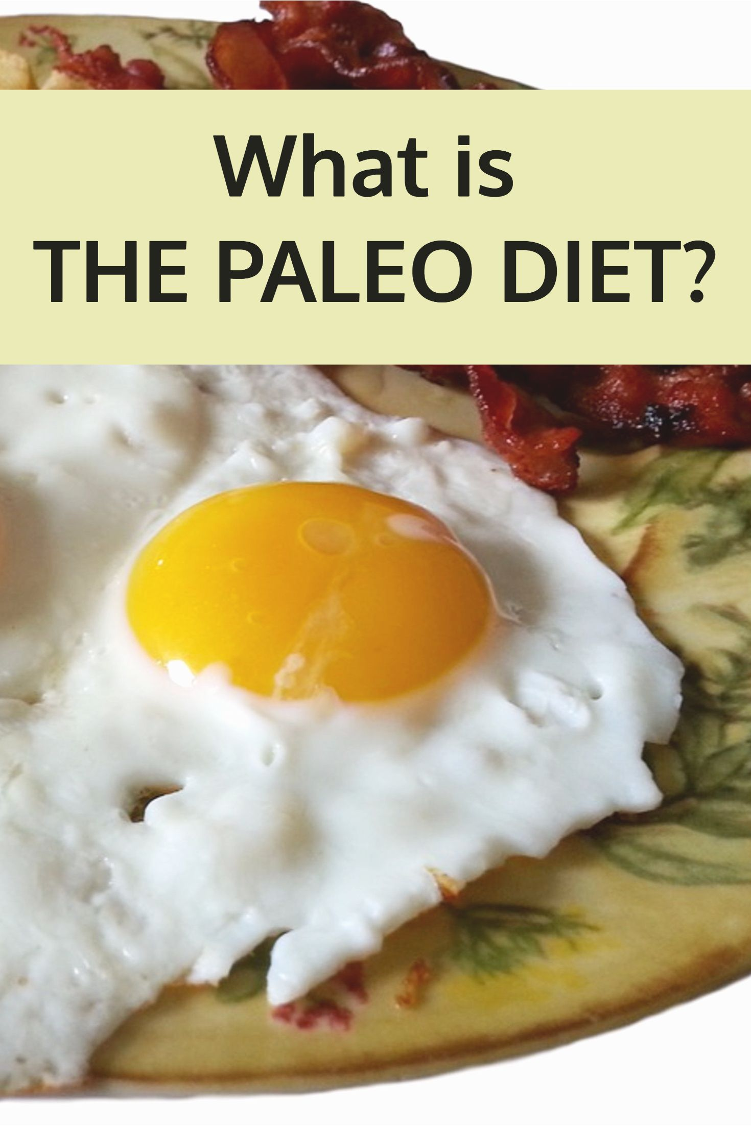 What is the paleo diet board and blog what is the paleo diet forumfinder Images