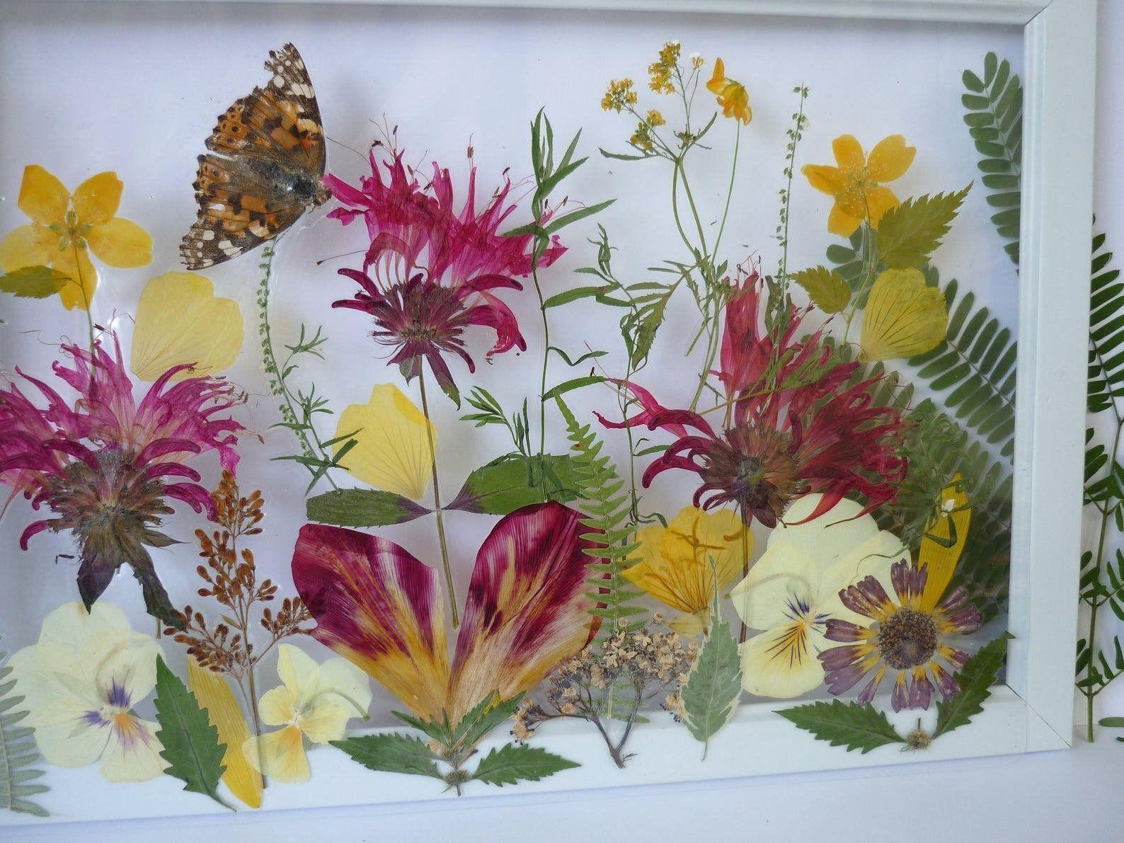 Kunst der gepressten Blumen, Hochzeitsgeschenk, Kunst der getrockneten Blumen, Dekoration der gepressten Blumen …