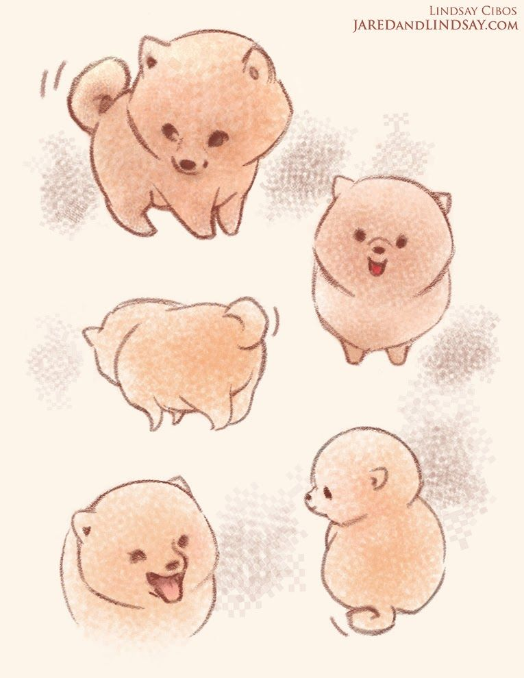 Kawaii poms pomeranian pinterest kawaii chibi and foxes for Cute simple drawings
