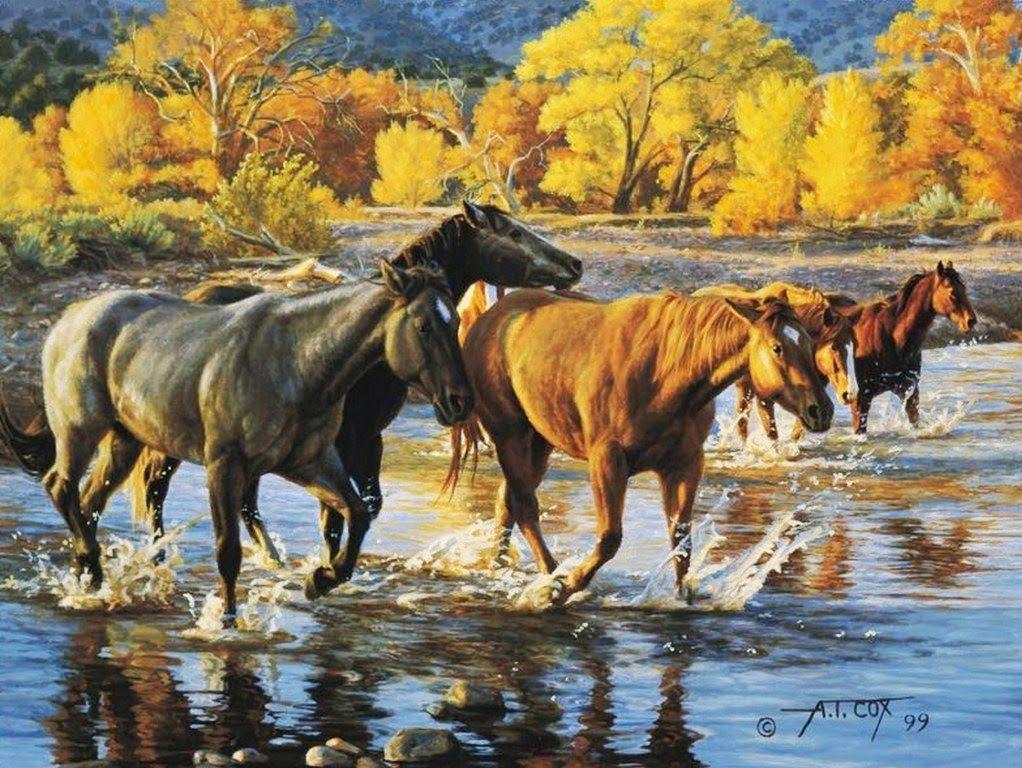 Pinturas de Tim Cox, Nació en 1957, Artista de Arizona, EE. UU   ART ...