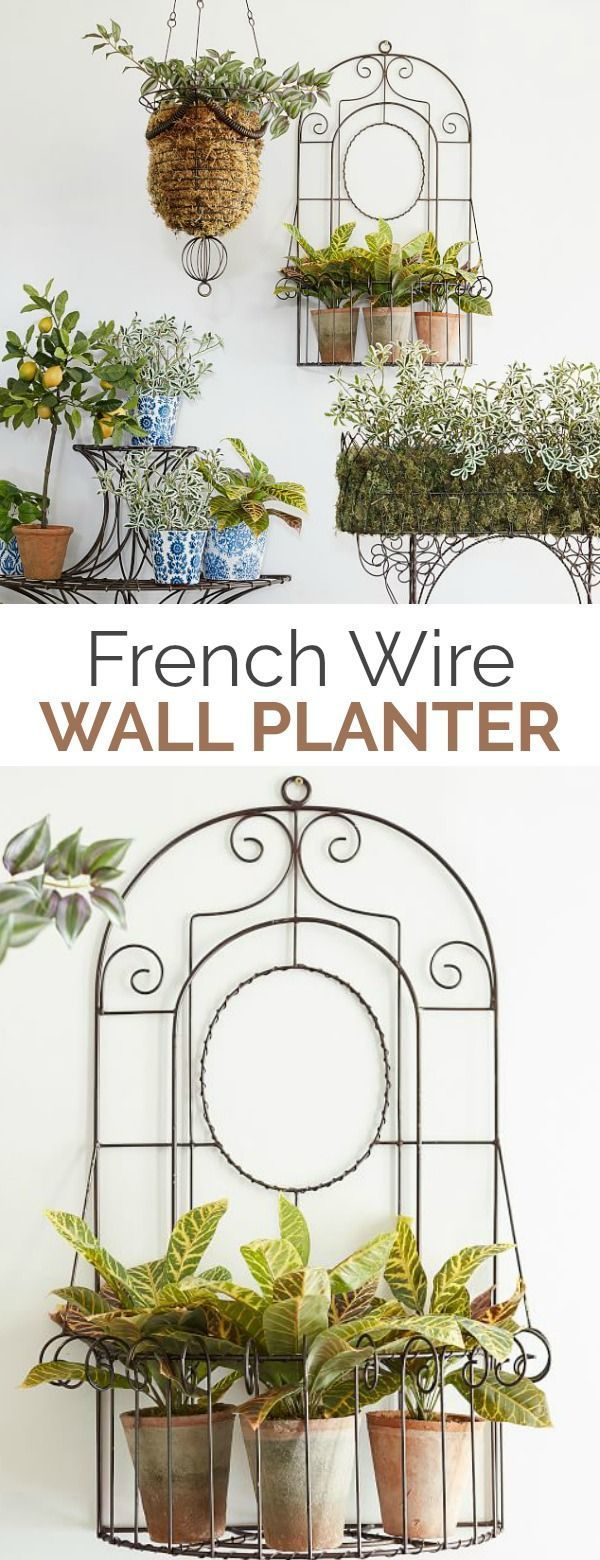 Bronze French Wire Wall Planter Display Greenery And Herbs In