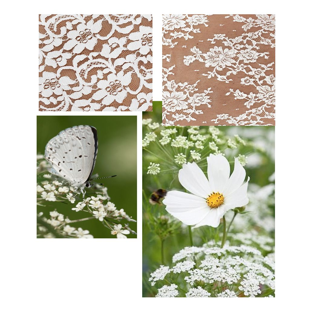 Contemplate the subtle beauty of a flower, leaf or branch to imagine any garden woven into lace. Uncover the inspiration behind our collection at www.avadelaflor.blogspot.co.uk